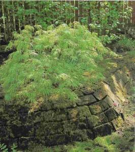 стенка для клумбы из природного камня
