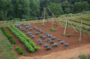 садово-огородный участок