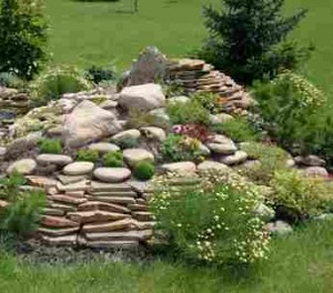 сад камней(альпинарий)